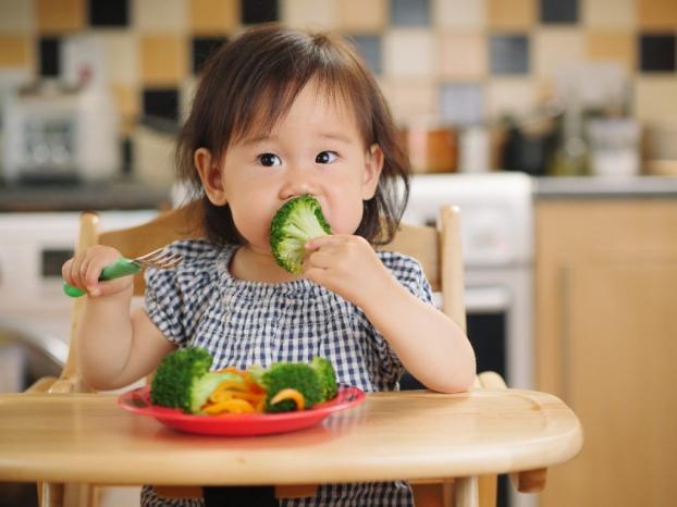 Điều gì xảy ra với cơ thể khi cho trẻ ăn chay? Ăn chay có tốt cho trẻ? - Ảnh 2