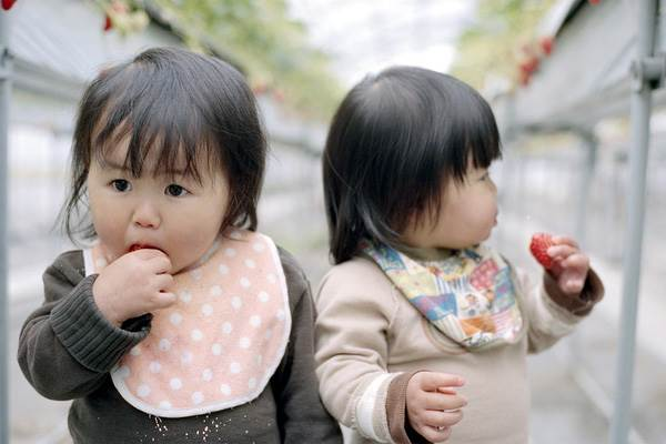 Sun và Moon - cặp song sinh tóc ngố, má phính đốn tim cư dân mạng với loạt ảnh đẹp long lanh - Ảnh 2