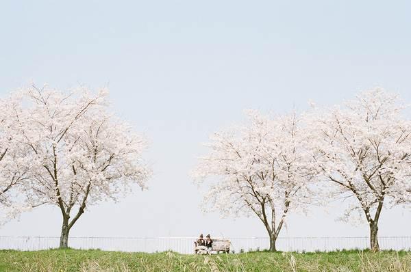 Sun và Moon - cặp song sinh tóc ngố, má phính đốn tim cư dân mạng với loạt ảnh đẹp long lanh - Ảnh 37