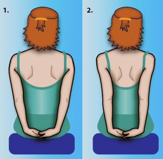 Cần gì uống thuốc, đây là bài tập giảm đau lưng nhanh chóng cho dân văn phòng - Ảnh 2
