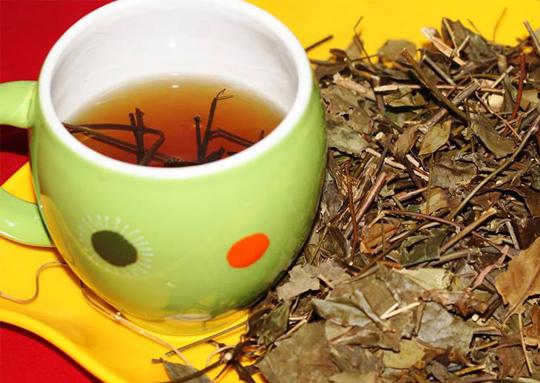 Bật mí cách pha trà ngon cho ngày Tết thêm ấm áp và dồi dào sức khỏe - Ảnh 2