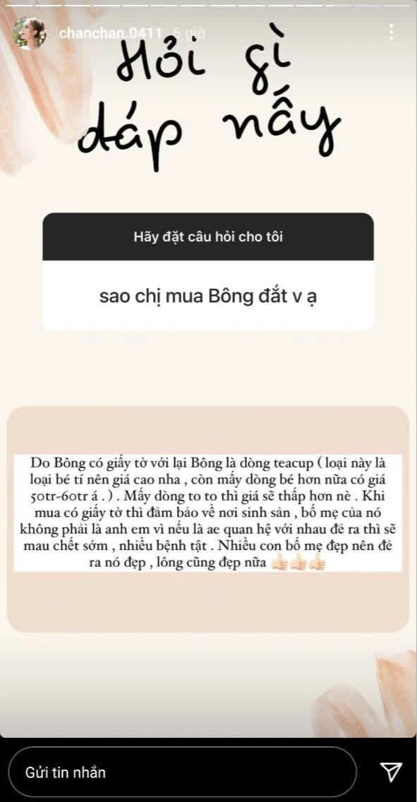 Vợ streamer giàu nhất Việt Nam mua cún cưng giá 23 triệu đồng - Ảnh 3