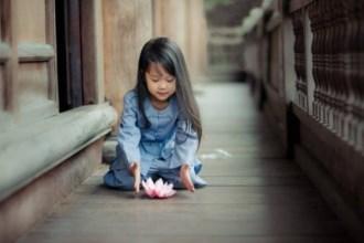 Phật dạy: 5 điều nhất định phải nhớ để năm mới hạnh phúc, tài lộc sâu dày, cả năm hưởng phúc báo