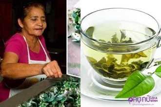 Uống ly trà này 3 lần/tuần, người phụ nữ 66 tuổi cả đời không bệnh tật
