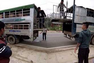 Hà Giang: Chủ trang trại cho côn đồ chặn xe cướp lợn đã bán, ép tài xế ký giấy nợ hơn 3 tỷ đồng?