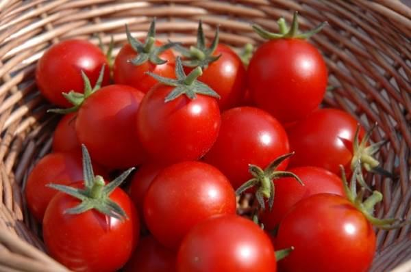 Những cấm kỵ bắt buộc ai cũng phải biết khi ăn cà chua - Ảnh 1