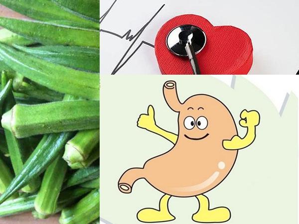 Ăn thường xuyên nhưng có thể bạn không ngờ đậu bắp còn có 3 tác dụng tuyệt vời này