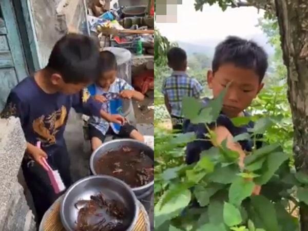 Rơi nước mắt cảnh 2 bé trai nhà nghèo còn nhỏ xíu đã biết làm đủ thứ việc phụ bố mẹ
