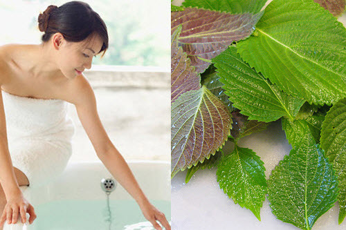 Các loại nước tắm làm trắng da siêu hiệu quả ngay tại nhà - Ảnh 5