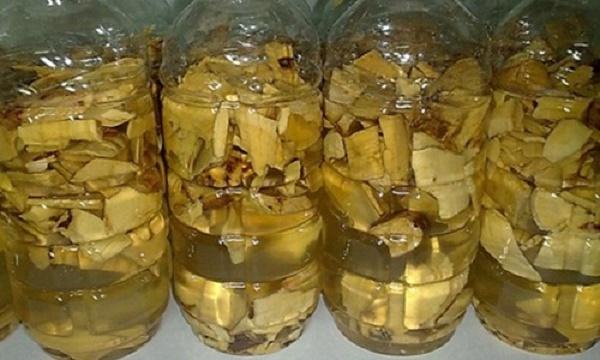 Cây lược vàng ngâm rượu có nhiều tác dụng tốt