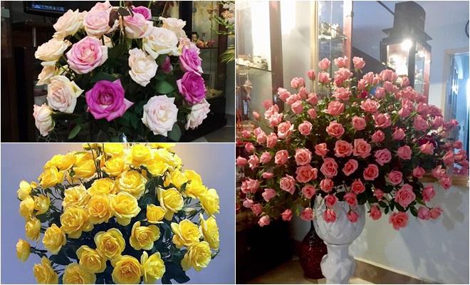 Hoa hồng là loài hoa quen thuộc có nhiều màu sắc xinh đẹp và ý nghĩa