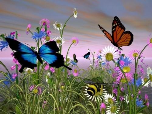 Giải mã điềm báo khi bướm đen bay quanh người  - Ảnh 1
