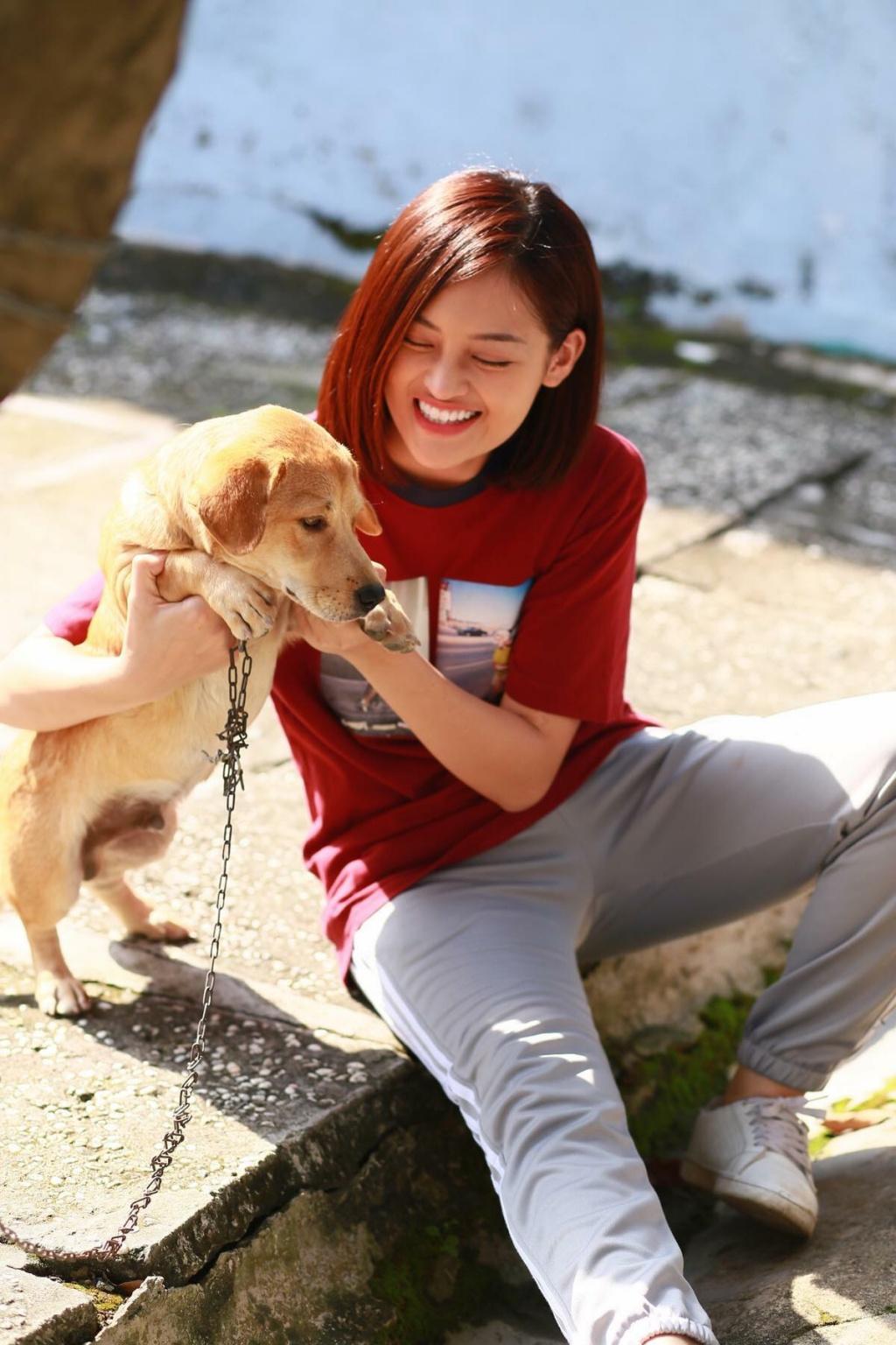 """Loài chó là một loài được xem là """"bạn"""" của con người  và rất cần được bảo vệ"""