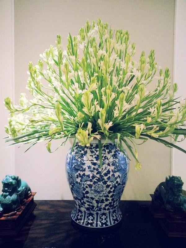 Hoa huệ tỏa hương thơm ngát được cắm theo kiểu tỏa tròn trong chiếc bình gốm sứ họa tiết