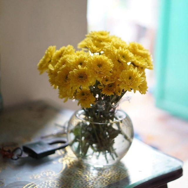 Cắm hoa cúc để bàn thờ trong bình hoa tròn thấp