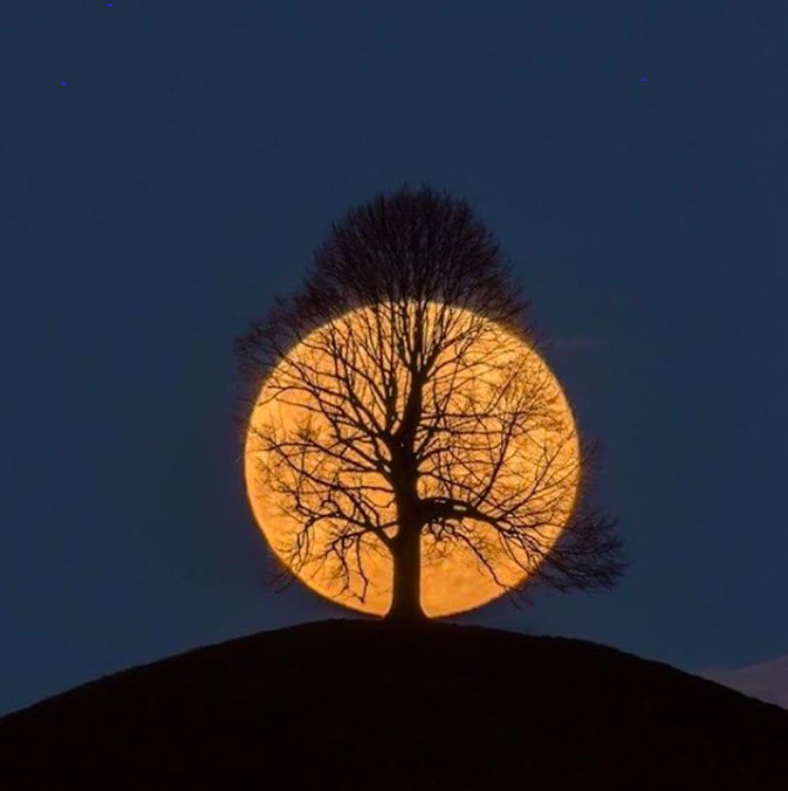 Ngày mùng 5 chính là ngày lực tương hỗ với mặt trăng tác động mạnh nhất