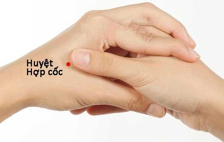 Hướng dẫn cách chữa nghẹt mũi bằng bấm huyệt đơn giản, an toàn tại nhà - Ảnh 5