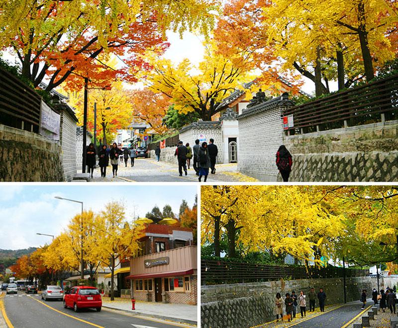 Vào khoảng tháng 10, ở Hàn Quốc có thời tiết mát mẻ dễ chịu và ít mưa