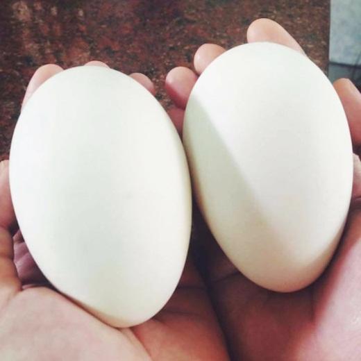 Trứng ngỗng có tác dụng gì đối với sức khỏe mẹ bầu - Ảnh 4