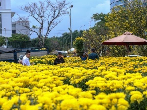 Top 6 chợ hoa Tết đẹp nhất năm 2021