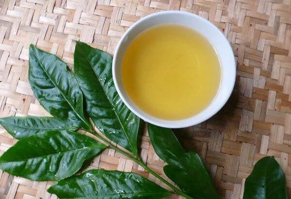 Uống trà xanh mỗi ngày tốt cho bộ não