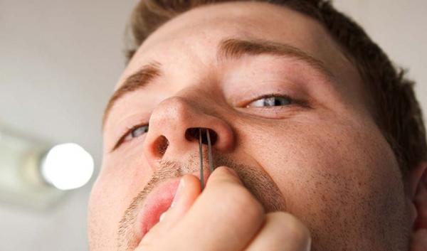 Không nên nhổ lông mũi vì có thể gây viêm nhiễm