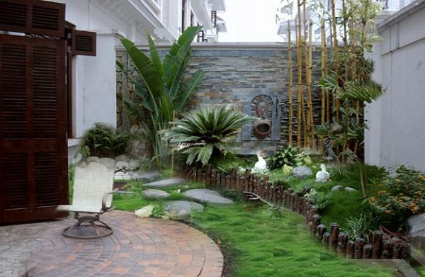 Trồng cây xanh để thanh lọc không khí, làm mát cho ngôi nhà bạn