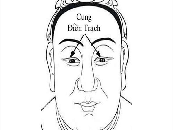 Cung điền trạch trên khuôn mặt là gì? Có ý nghĩa như thế nào?