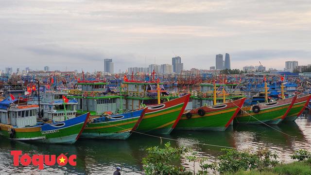 Ứng phó bão số 9: Đà Nẵng sẽ cấm người và phương tiện ra đường từ chiều tối 27/10 - Ảnh 1