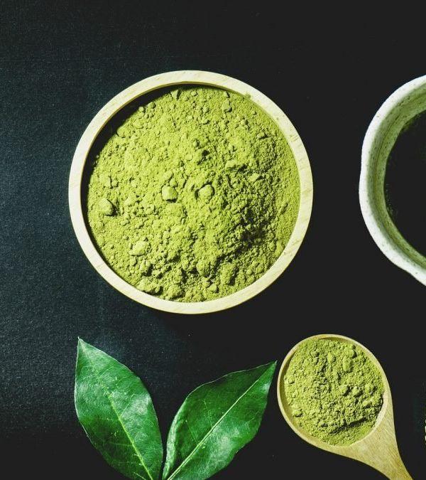 Bánh Trung Thu trà xanh, màu xanh đậm đà gọi sắc thu
