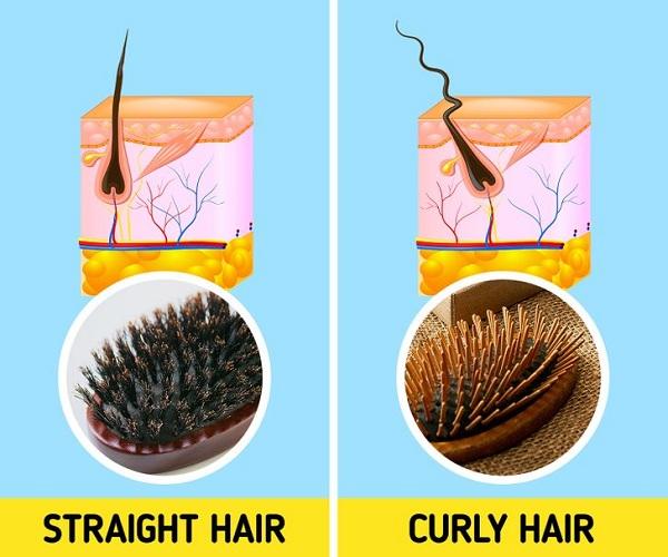 7 lỗi chải đầu khiến tóc nhanh hư tổn - Ảnh 3