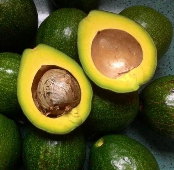 10 loại trái cây 'rẻ bèo' ăn mỗi ngày sẽ ngừa nhiều bệnh tật nhất là ung thư - Ảnh 5
