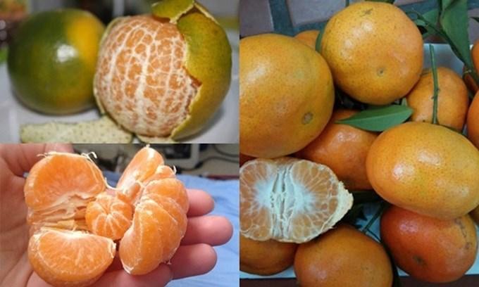"""Lộ diện top 6 loại trái cây """"thần kì"""" ăn vào là cao như dàn soái ca u23, dù hết tuổi dậy thì cũng lên được 5cm thậm chí là 7cm - Ảnh 1"""