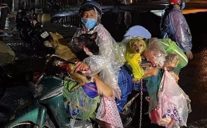 Nữ bác sĩ trong vụ 15 con chó bị tiêu hủy: Mang nhiều bệnh nền, chỉ vài tháng nữa là về hưu nhưng vẫn tham gia chống dịch - Ảnh 1