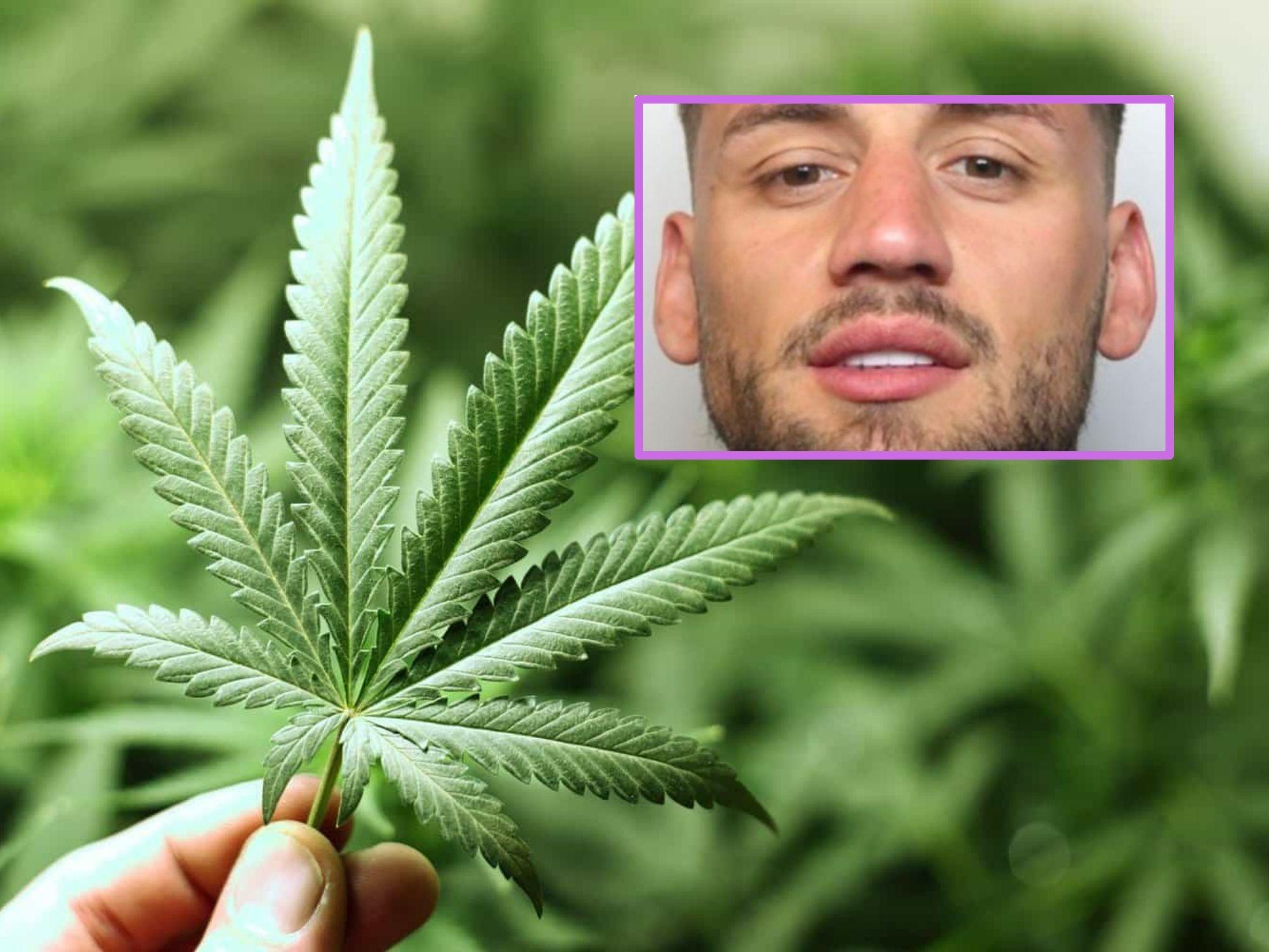 Kẻ buôn ma túy gây sốt MXH với vẻ ngoài vô cùng 'nóng bỏng' sau khi bị bắt vì cung cấp cần sa