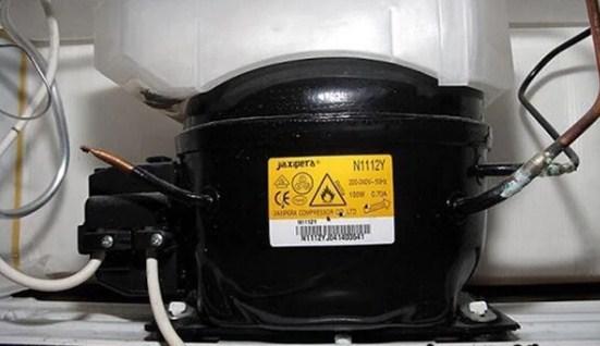5 dấu hiệu bất thường của của tủ lạnh báo hiệu cần sửa sớm để tránh những nguy hiểm - Ảnh 1