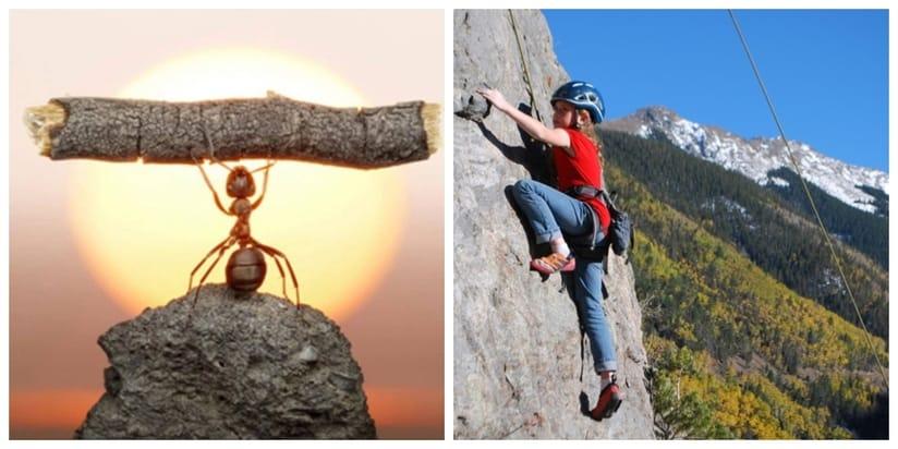 Dạy con bản lĩnh và kỹ năng vượt qua đại dịch và biến cố - Ảnh 3