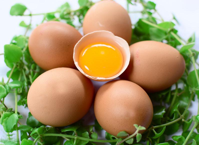 12 thực phẩm tốt hàng đầu cho trẻ nhỏ, mẹ nên cho bé ăn thường xuyên - Ảnh 1