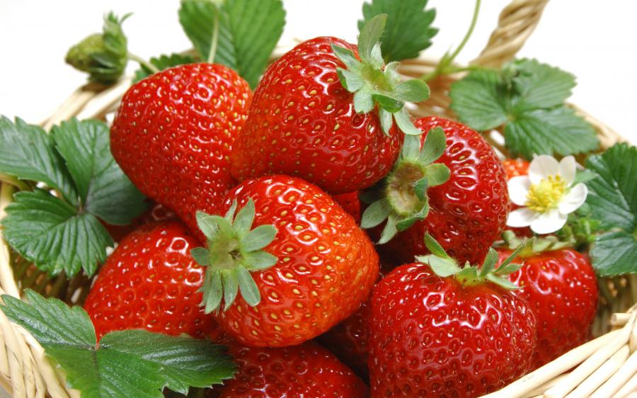 12 thực phẩm tốt hàng đầu cho trẻ nhỏ, mẹ nên cho bé ăn thường xuyên - Ảnh 4