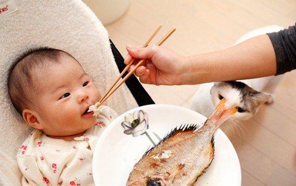 Mẹo dân gian chữa hóc xương cá tại nhà an toàn cho trẻ mẹ đừng bỏ qua - Ảnh 1
