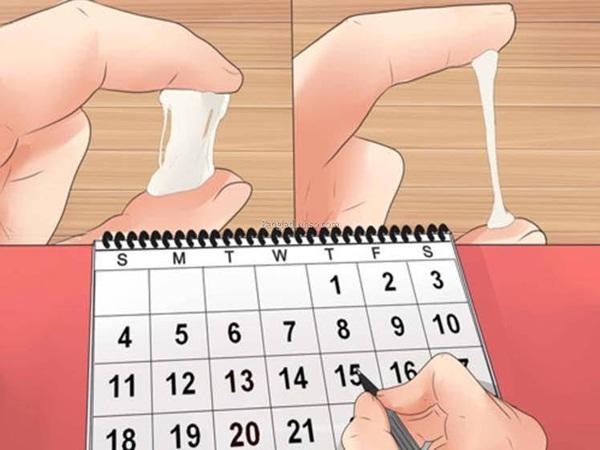 Ngày rụng trứng là ngày nào?
