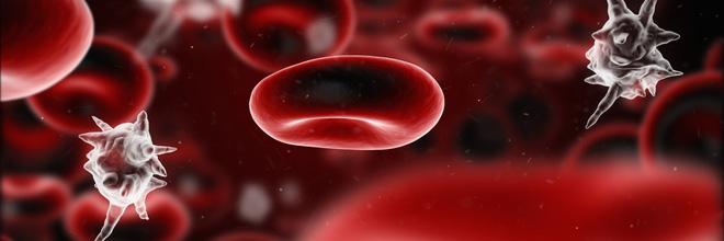 Nhiễm trùng máu - 'kẻ giết người thầm lặng' mọi bà mẹ nên nắm được triệu chứng sớm vì rất dễ bị chẩn đoán nhầm - Ảnh 2