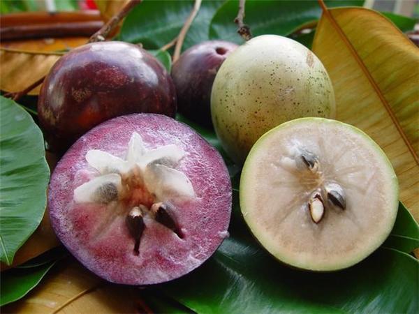 Phụ nữ sau sinh nên ăn hoa quả gì? - Ảnh 4