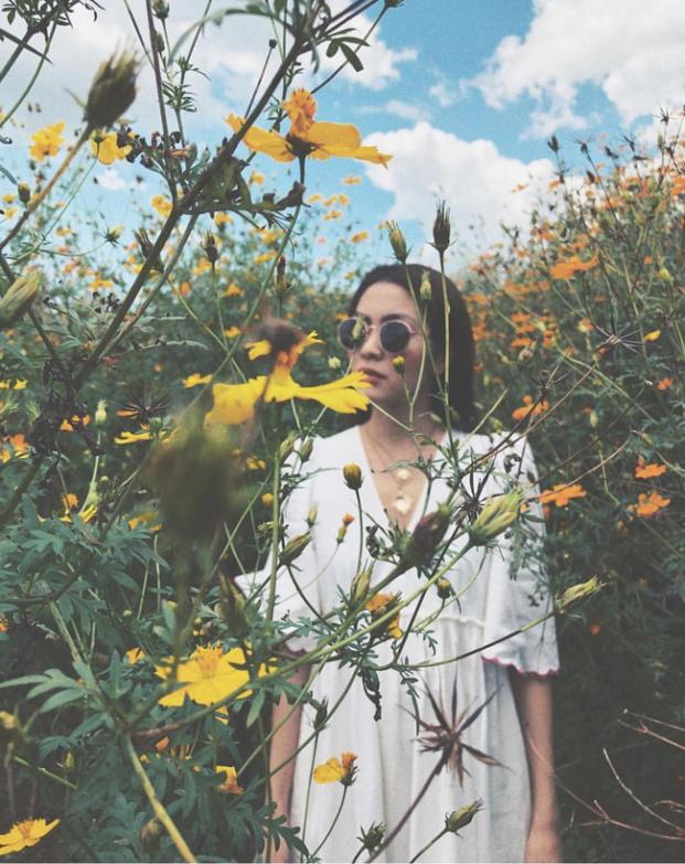 Tăng Thanh Hà 'đốn tim' fan với loạt ảnh đẹp như tranh vẽ giữa rừng hoa dã quỳ - Ảnh 2