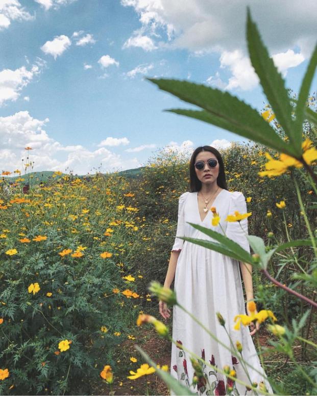 Tăng Thanh Hà 'đốn tim' fan với loạt ảnh đẹp như tranh vẽ giữa rừng hoa dã quỳ - Ảnh 3
