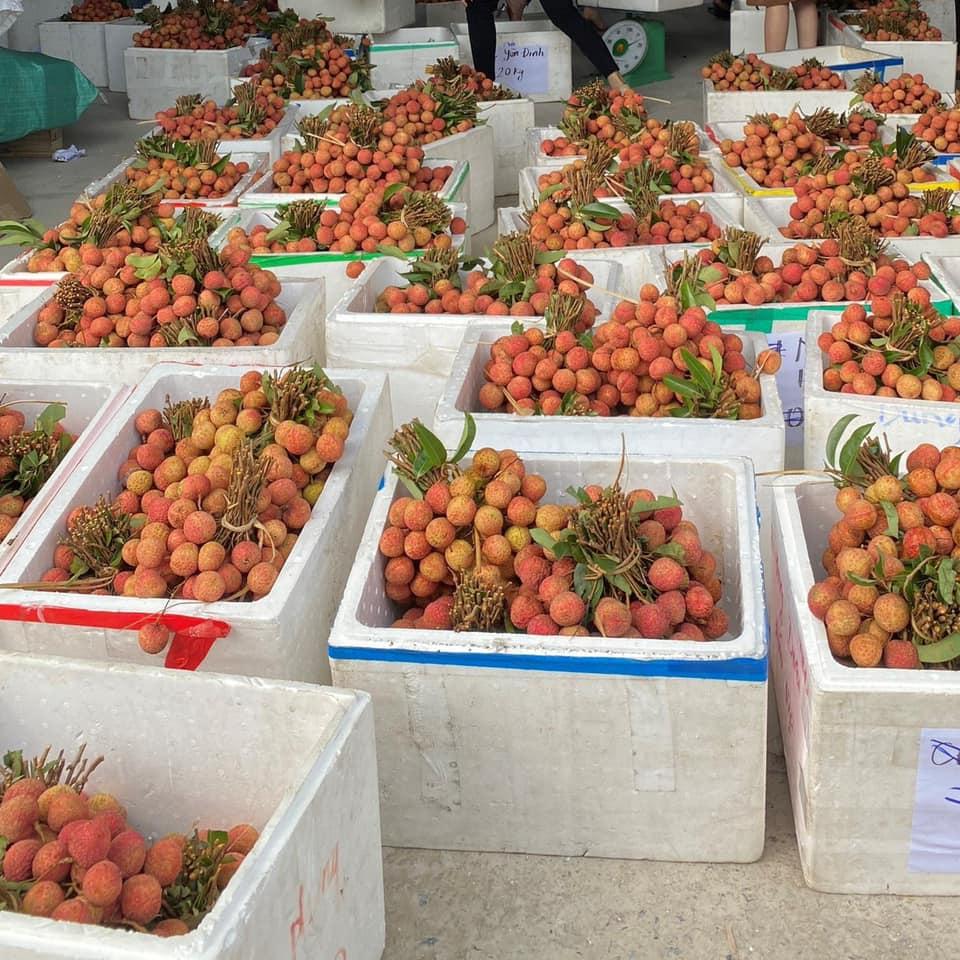 Sốc: Vải thiều bán chợ Việt Nam vài chục ngàn cả 'bó', sang Nhật Bản 12 trái/1 triệu, khi ăn phải 'cắt nhỏ từng thớ' - Ảnh 2