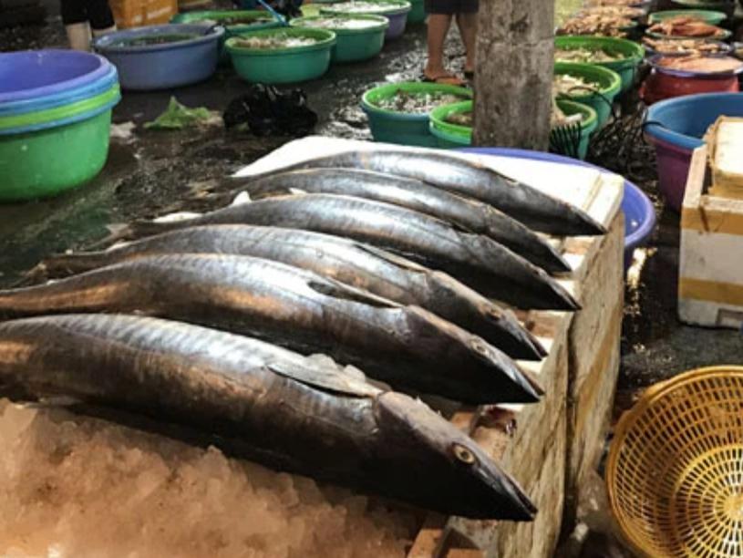Lần đầu tiết lộ về góc tối của các cửa hàng bán cá: Cá ế vẫn có thể đến tay người tiêu dùng theo những cách này