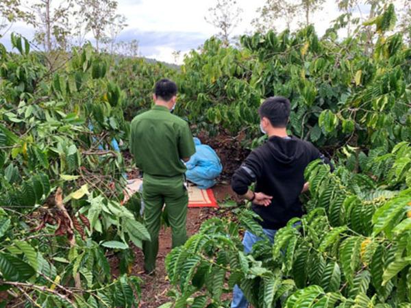 Đắk Lắk: Phát hiện một nửa thi thể nam giới trong rẫy cà phê