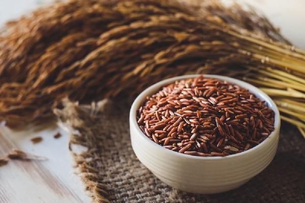 5 loại thực phẩm ăn thay gạo trắng vẫn đủ dinh dưỡng, đảm bảo sức khỏe - Ảnh 1