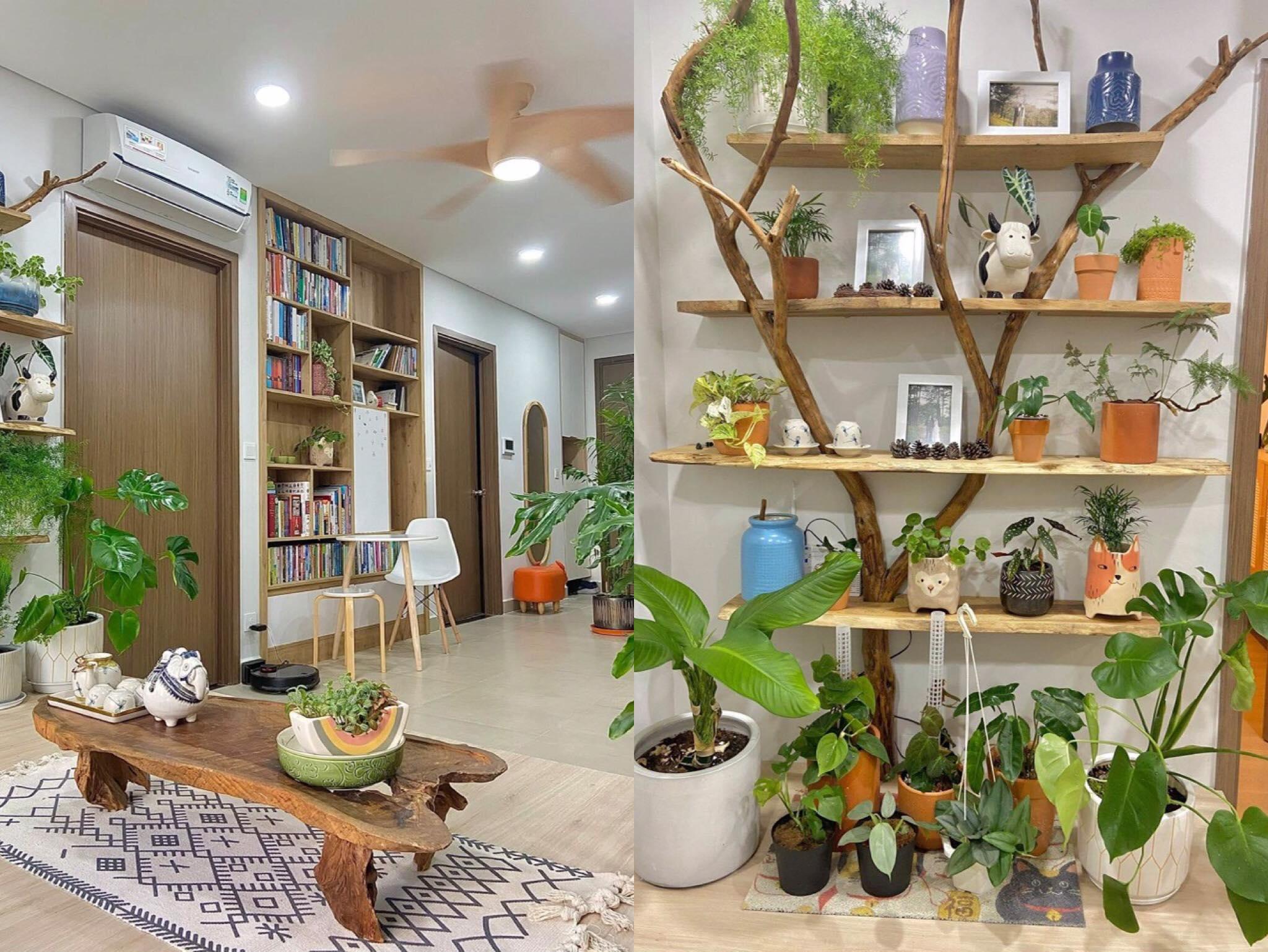 Đôi vợ chồng mang cả 'không gian xanh' vào trong ngôi nhà nho nhỏ của mình